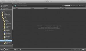 scaricare musica da spotify mp3 offline