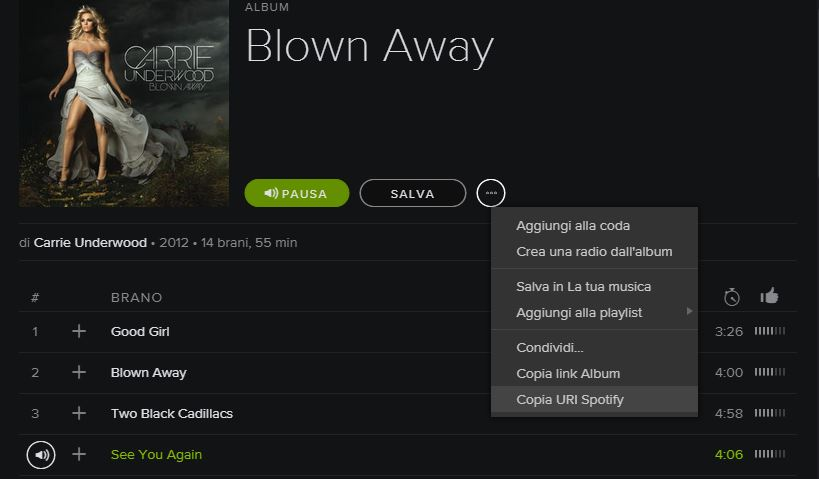scaricare musica da spotify gratuitamente per ascoltarla offline